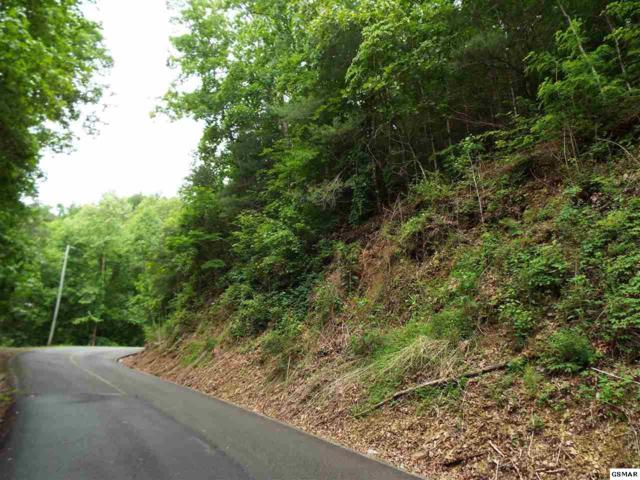 Lot 0014 Sunset Rd, Sevierville, TN 37876 (#216573) :: Suzanne Walls with eXp Realty