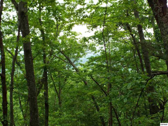 Lot 5 Overholt Trail Off, Sevierville, TN 37876 (#216579) :: Billy Houston Group