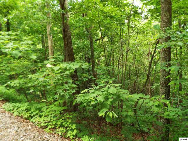 Lot 11 Overholt Trail, Sevierville, TN 37876 (#216580) :: Billy Houston Group