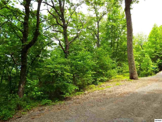 Lot 10 Overholt Trail, Sevierville, TN 37876 (#216585) :: Billy Houston Group