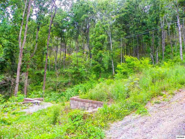 3143 Sourwood Way Lot# 31, Sevierville, TN 37862 (#216597) :: Billy Houston Group