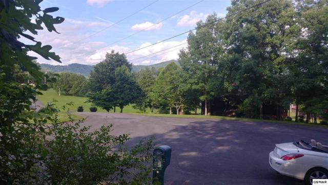 Lot 11 Laurelwood Ave, Sevierville, TN 37862 (#216608) :: Billy Houston Group