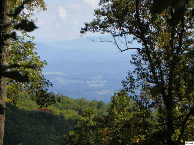 2540 & 2538 Bluff Mountain Road Lots# 7 & 8, Sevierville, TN 37876 (#216624) :: Billy Houston Group
