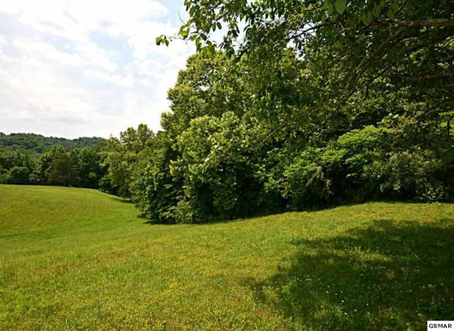 Lot PT28 Winding Ridge Trail, Seymour, TN 37865 (#216629) :: Billy Houston Group