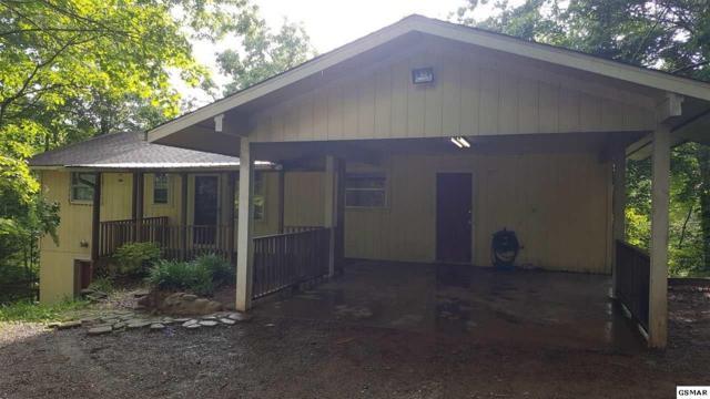 435 Hemlock Lane, Sevierville, TN 37876 (#216630) :: Billy Houston Group