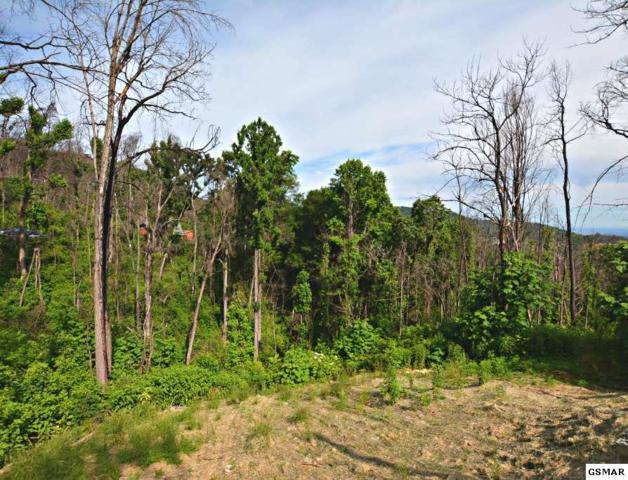 1076 Village Loop Road, Gatlinburg, TN 37738 (#216657) :: Four Seasons Realty, Inc