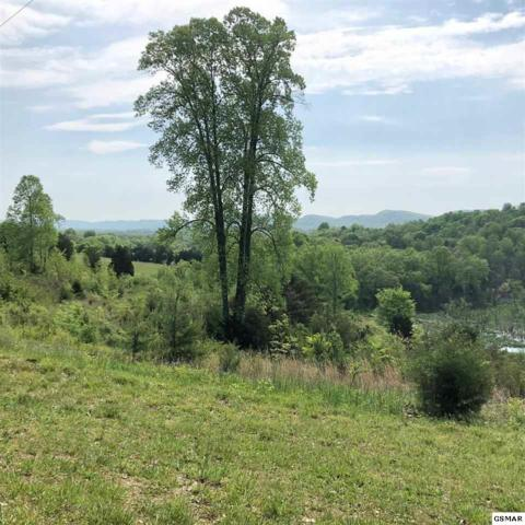 Lot 17 Pinto Ridge Rd, New Market, TN 37820 (#216658) :: Billy Houston Group