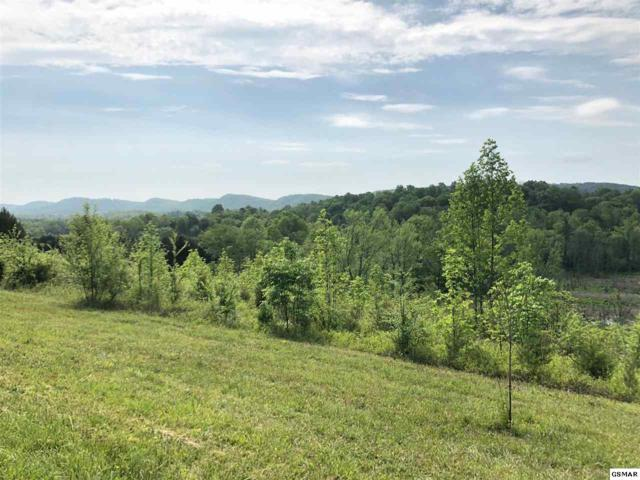 Lot 18 Pinto Ridge Road, New Market, TN 37820 (#216659) :: Billy Houston Group