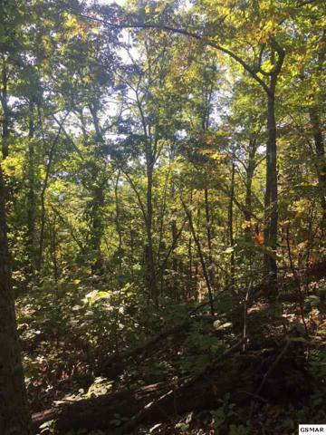 Lot 22 S Ridge Way, Cosby, TN 37722 (#216674) :: Four Seasons Realty, Inc