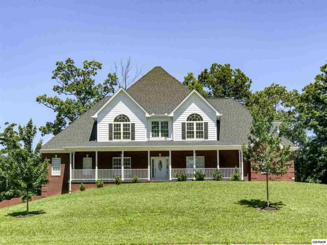 2045 Lindsey Ln, Jefferson City, TN 37760 (#216700) :: Four Seasons Realty, Inc