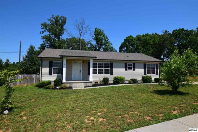 1150 Case View Rd, Dandridge, TN 37725 (#216701) :: Colonial Real Estate