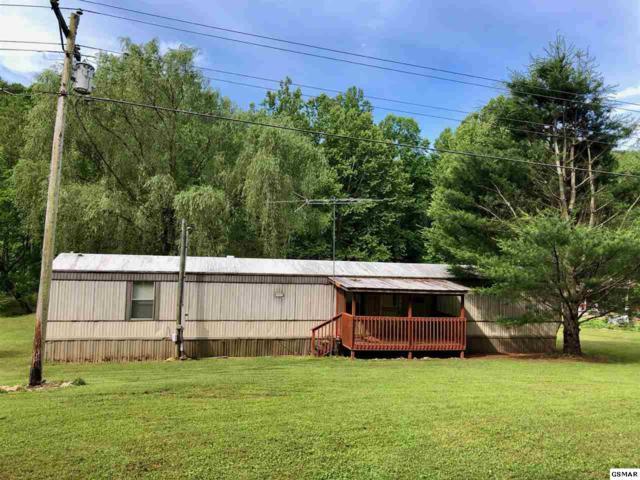 433 Caney Creek Rd, Cosby, TN 37722 (#216704) :: Four Seasons Realty, Inc