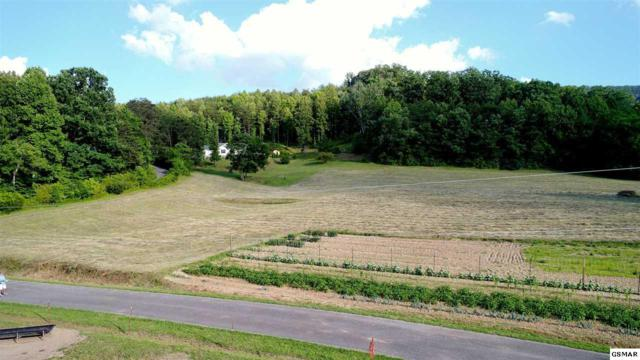1.12 ACRES Trentham Rd, Newport, TN 37821 (#216710) :: The Terrell Team