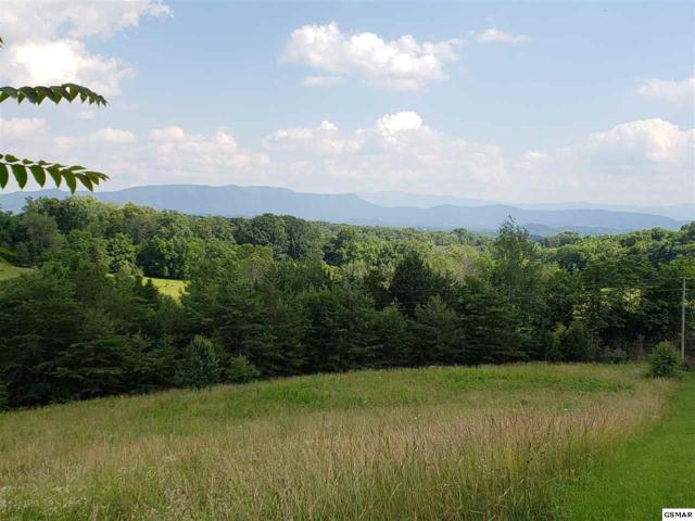 Tract 2 Zirkle Rd Lot 2 Zirkle Ro, Dandridge, TN 37725 (#216716) :: Billy Houston Group