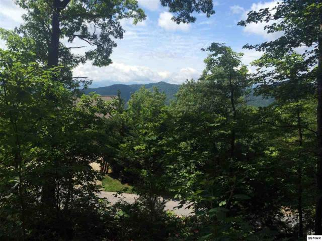 Lot 120E Settlers View Lane, Sevierville, TN 37862 (#216718) :: Four Seasons Realty, Inc