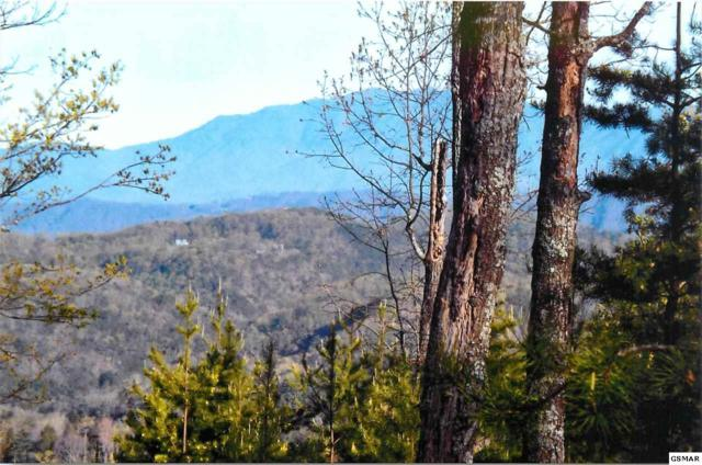 Lot 16 Summit Trails Drive, Sevierville, TN 37876 (#216719) :: Billy Houston Group
