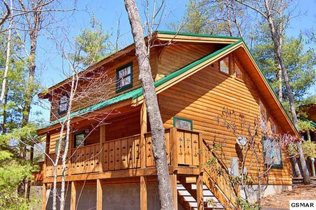 354 Wild Orchid Way Lilac Log Cabin, Gatlinburg, TN 37738 (#216729) :: Colonial Real Estate