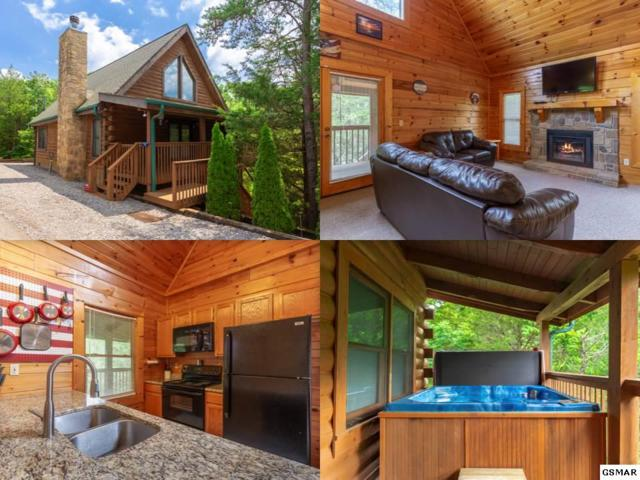 2524 Fleming Way, Sevierville, TN 37876 (#216733) :: Four Seasons Realty, Inc