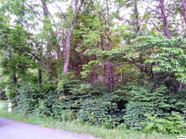 Tramel Rd, Sevierville, TN 37862 (#216745) :: Colonial Real Estate