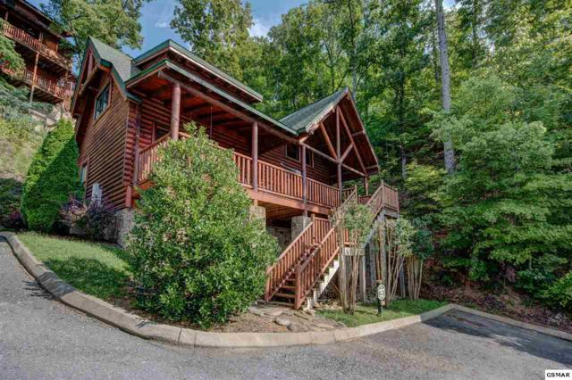 1602 Moutain Lodge Way, Sevierville, TN 37862 (#216762) :: Colonial Real Estate