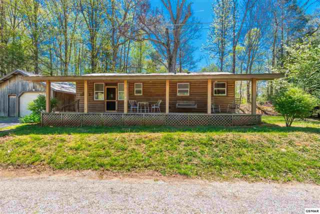 7732 Cedar Creek Rd, Townsend, TN 37882 (#216764) :: Four Seasons Realty, Inc
