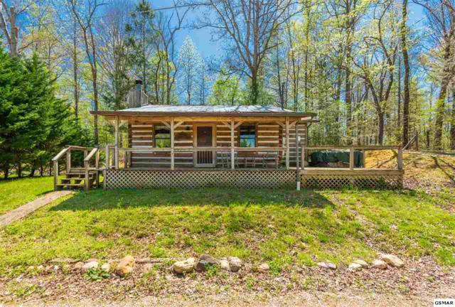 7720 Cedar Creek Rd, Townsend, TN 37882 (#216765) :: Four Seasons Realty, Inc