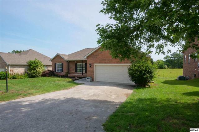 1064 Saint Johns Dr, Maryville, TN 37801 (#216786) :: Colonial Real Estate