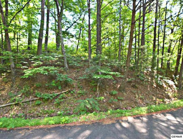 Lot 18 Tanrac Trail, Gatlinburg, TN 37738 (#216787) :: Billy Houston Group