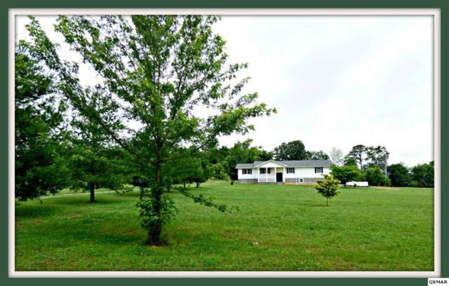 1117 Zirkle Rd., Dandridge, TN 37725 (#216803) :: Four Seasons Realty, Inc