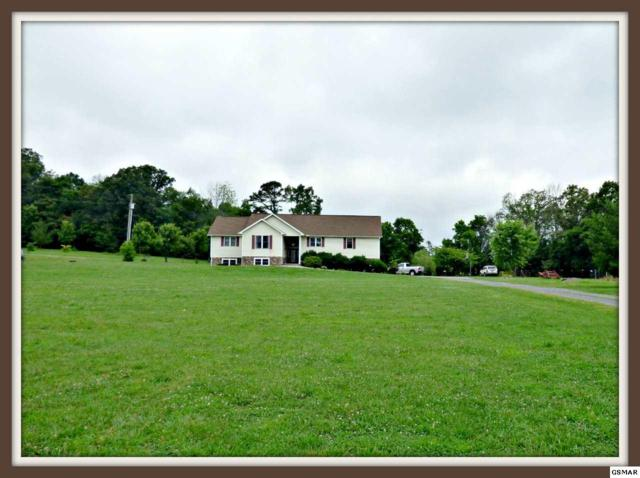 1121 Zirkle Rd., Dandridge, TN 37725 (#216805) :: Four Seasons Realty, Inc