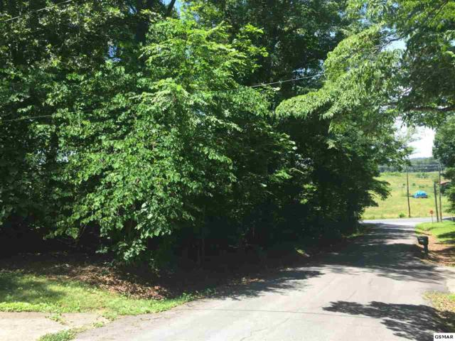 Lot 1 Earnest Mcmahan Rd Topside Drive /, Sevierville, TN 37862 (#216807) :: Colonial Real Estate