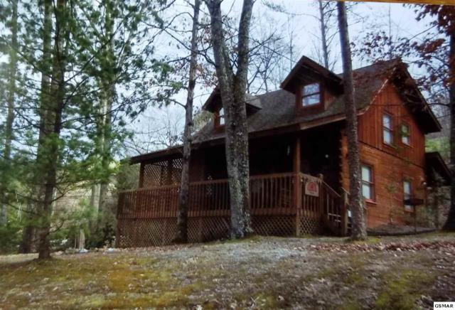 3310 Twin City Way, Pigeon Forge, TN 37863 (#216822) :: Billy Houston Group