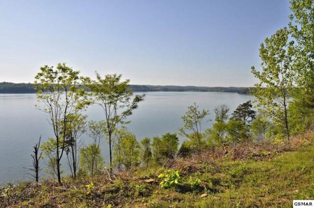 Lot 65 Stone Bridge Drive, Dandridge, TN 37725 (#216850) :: Billy Houston Group