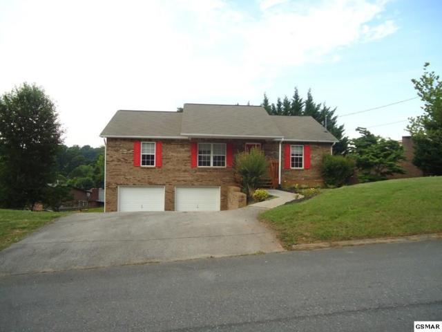 448 Cherokee Hills Road, Seymour, TN 37865 (#216853) :: Colonial Real Estate