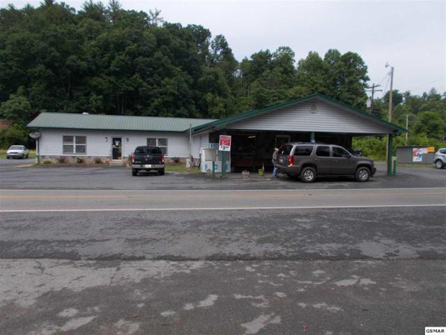 790 Highway 107 S, Del Rio, TN 37727 (#216857) :: The Terrell Team