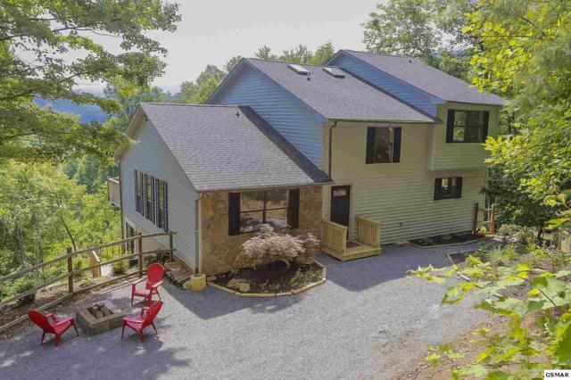 3016 Hatcher Mountain Road, Sevierville, TN 37862 (#216872) :: Four Seasons Realty, Inc