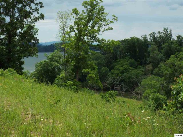 Lot 37 Stoneview Dr, Dandridge, TN 37725 (#216879) :: Billy Houston Group