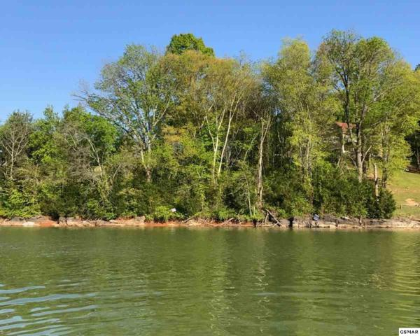 Lot 22 Sullivan Pointe, Dandridge, TN 37725 (#216909) :: Four Seasons Realty, Inc