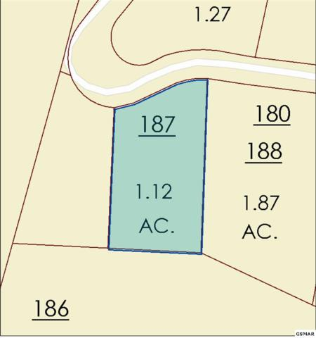 Lot 148 Mountaineer Trail, Sevierville, TN 37862 (#216917) :: Billy Houston Group