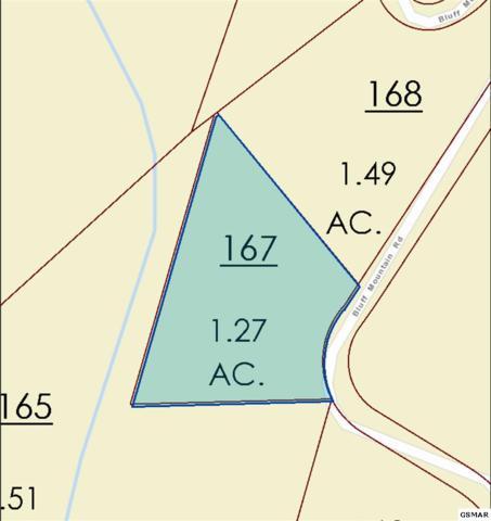 Lot 128 Bluff Mountain Rd, Sevierville, TN  (#216924) :: Billy Houston Group