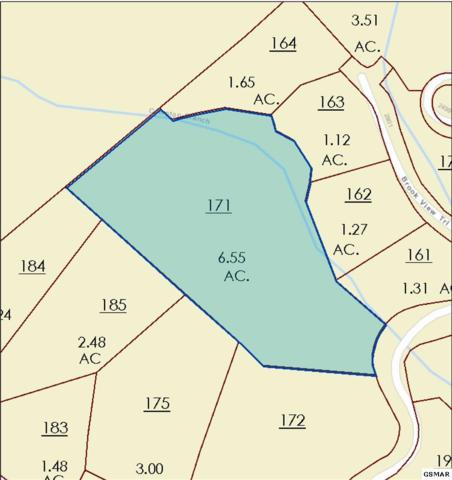 Lot 132R Summit Trails Dr, Sevierville, TN  (#216934) :: Billy Houston Group