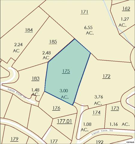 Lot 136 Mountaineer Vista Tr, Sevierville, TN  (#216936) :: Billy Houston Group