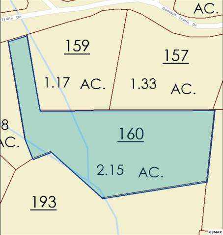 Lot 121 Summit Trails Dr, Sevierville, TN  (#216939) :: The Terrell Team