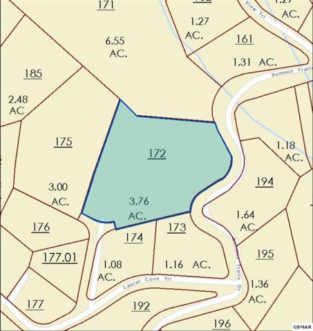 Lot 133 Mountaineer Vista Tr, Sevierville, TN  (#216940) :: Billy Houston Group