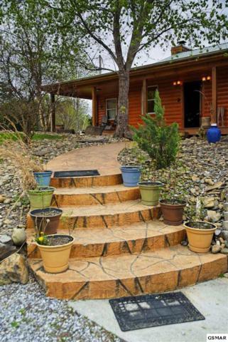 "1515 Bluebird Cove Lane ""Bluebird"", Sevierville, TN 37862 (#216965) :: Four Seasons Realty, Inc"
