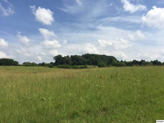 Sam Martin Road, Dandridge, TN 37725 (#216978) :: Colonial Real Estate