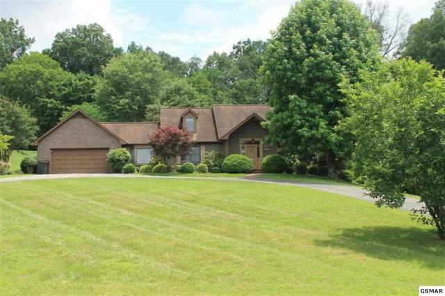 1310 Clinch View Circle, Jefferson City, TN 37760 (#216979) :: The Terrell Team