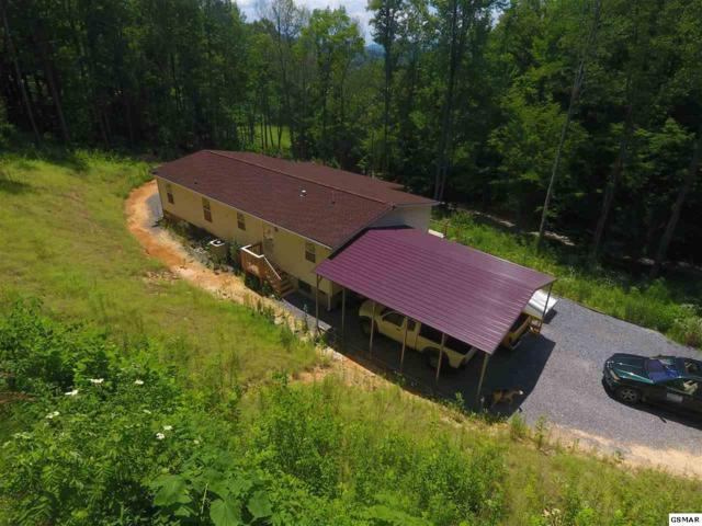 160 Greasy Cove Rd, Cosby, TN 37722 (#216982) :: Four Seasons Realty, Inc