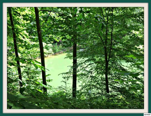 Lot 1 David Swann Dr., Dandridge, TN 37725 (#216983) :: Colonial Real Estate
