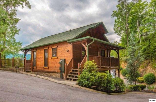 "764 Mountain Stream Way ""Unforgettable , Gatlinburg, TN 37738 (#216999) :: Four Seasons Realty, Inc"